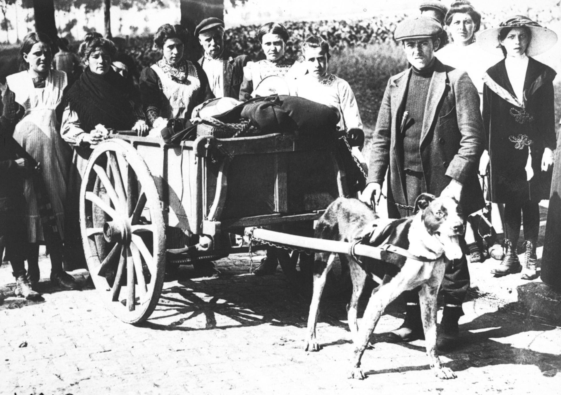 Fugitifs belges quittant Bruxelles (1914) - Gallica, Bibliothèque nationale de France, département Estampes et photographie, EST EI-13 (385)_files