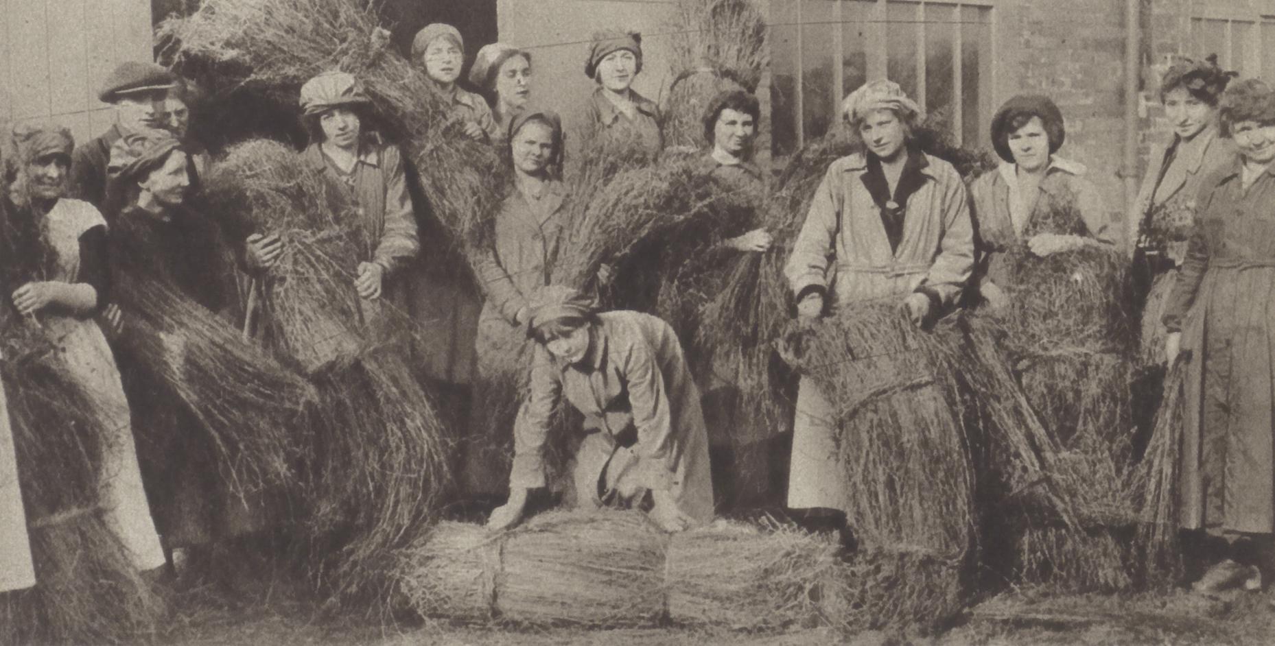 La culture du lin est devenue une industrie de guerre - La Guerre Illustré (1/6/1918), p. 25